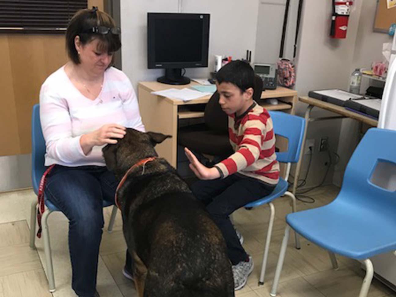 Nos amis, les animaux – École Saint-Gilles